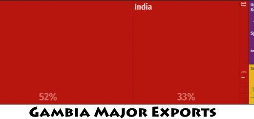 Gambia Major Exports
