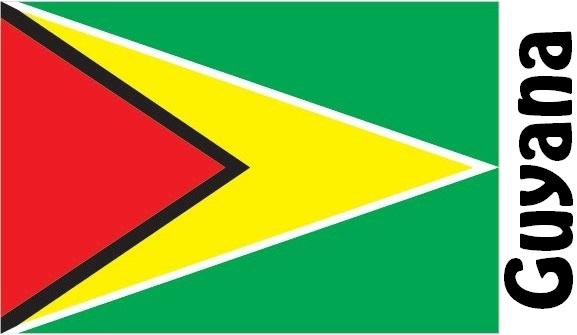 Guyana Country Flag