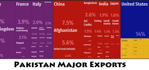 Pakistan Major Exports