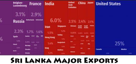 Sri Lanka Major Exports