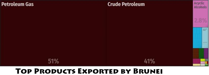 Top Products Exported by Brunei