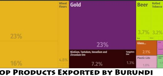 Top Products Exported by Burundi