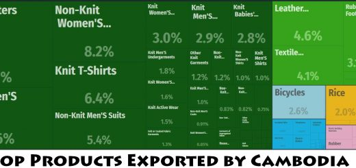Top Products Exported by Cambodia