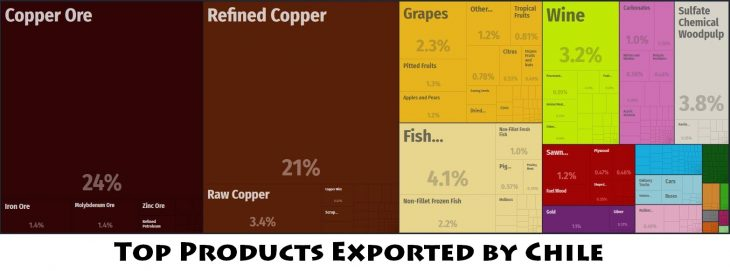Top Products Exported by Chile