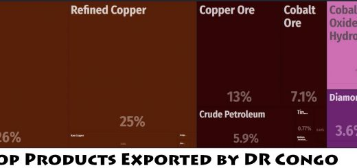 Top Products Exported by DR Congo