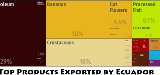 Top Products Exported by Ecuador