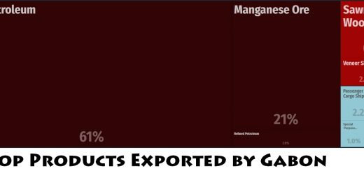 Top Products Exported by Gabon