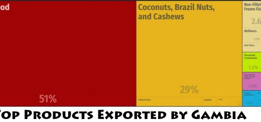 Top Products Exported by Gambia