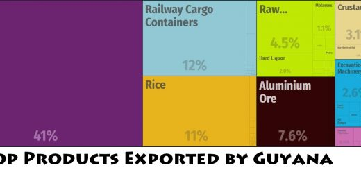 Top Products Exported by Guyana