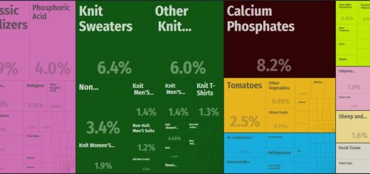 Top Products Exported by Iraq