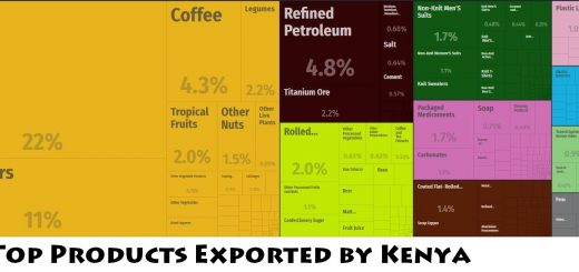 Top Products Exported by Kenya