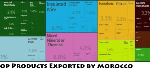 Top Products Exported by Morocco