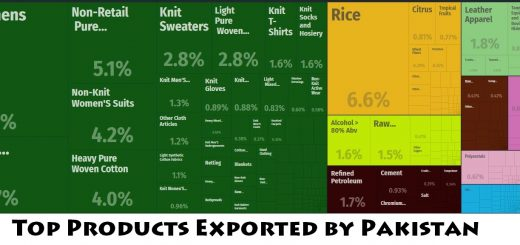 Top Products Exported by Pakistan