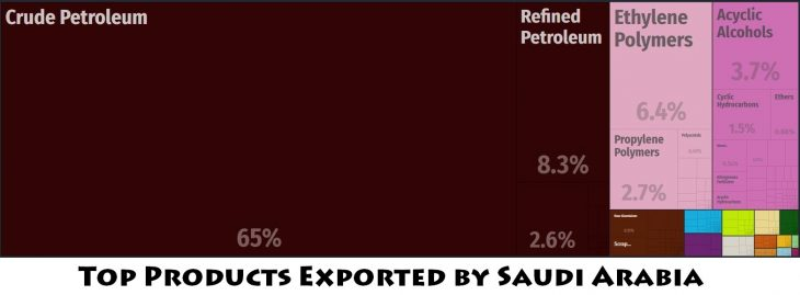 Top Products Exported by Saudi Arabia
