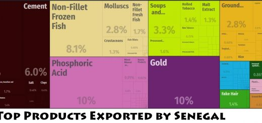 Top Products Exported by Senegal