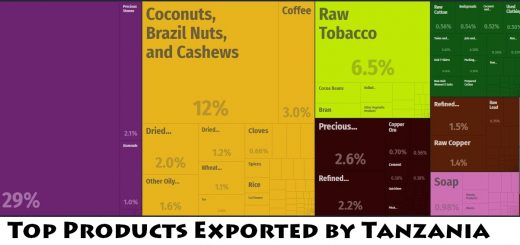 Top Products Exported by Tanzania