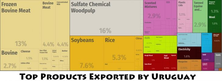 Top Products Exported by Uruguay