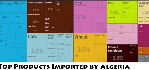 Top Products Imported by Algeria