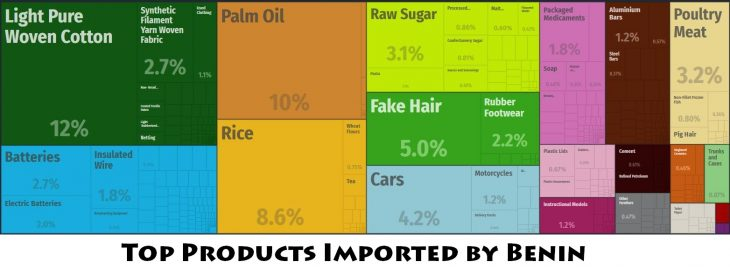 Top Products Imported by Benin