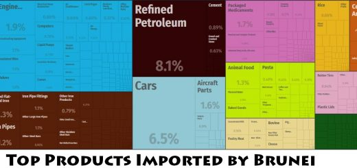Top Products Imported by Brunei