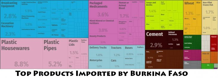 Top Products Imported by Burkina Faso