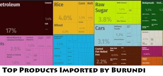 Top Products Imported by Burundi