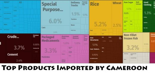Top Products Imported by Cameroon