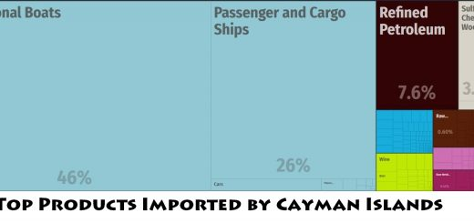 Top Products Imported by Cayman Islands