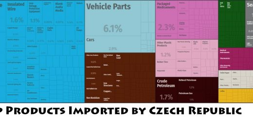 Top Products Imported by Czech Republic
