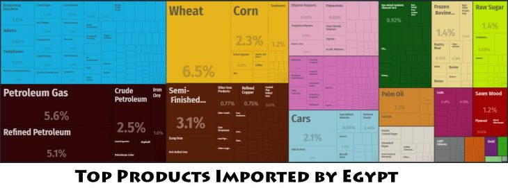 Top Products Imported by Egypt