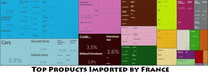 Top Products Imported by France
