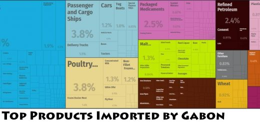 Top Products Imported by Gabon