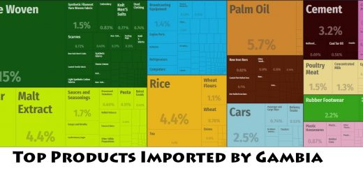 Top Products Imported by Gambia