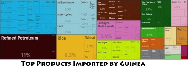 Top Products Imported by Guinea