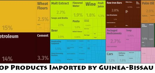 Top Products Imported by Guinea-Bissau