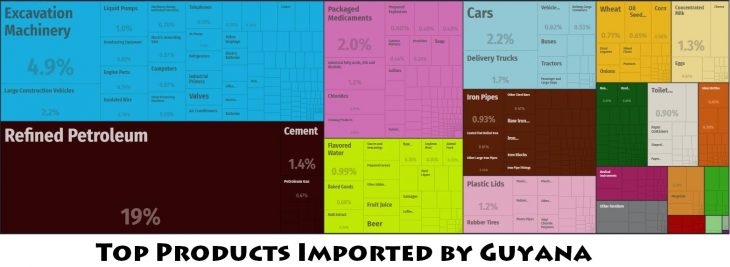 Top Products Imported by Guyana