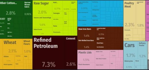 Top Products Imported by Haiti
