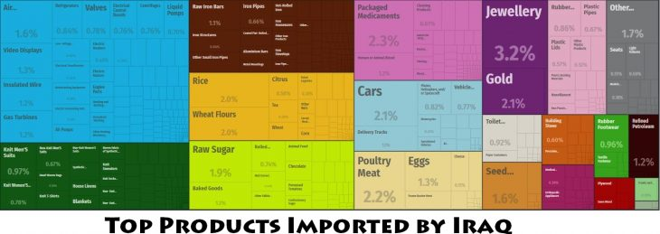 Top Products Imported by Iraq