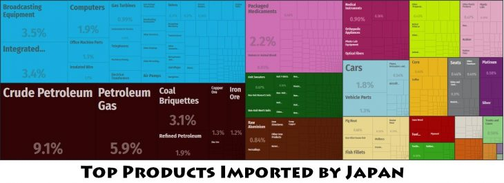 Top Products Imported by Japan