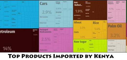 Top Products Imported by Kenya