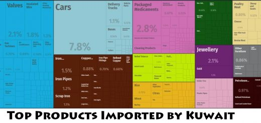 Top Products Imported by Kuwait