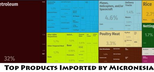 Top Products Imported by Micronesia