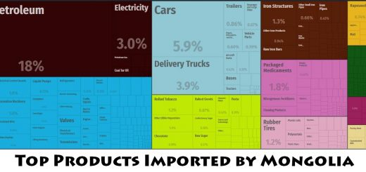 Top Products Imported by Mongolia