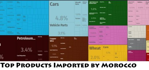 Top Products Imported by Morocco