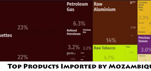 Top Products Imported by Mozambique