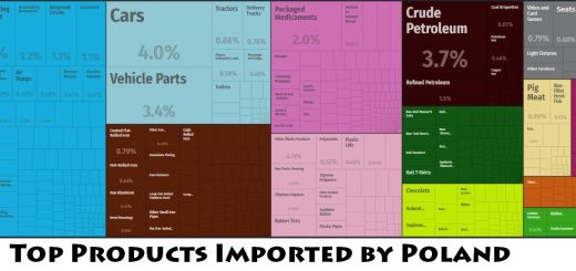 Top Products Imported by Poland