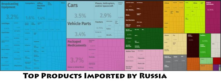 Top Products Imported by Russia