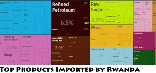Top Products Imported by Rwanda