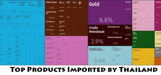 Top Products Imported by Thailand