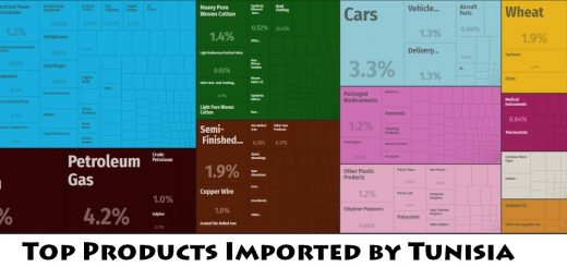Top Products Imported by Tunisia